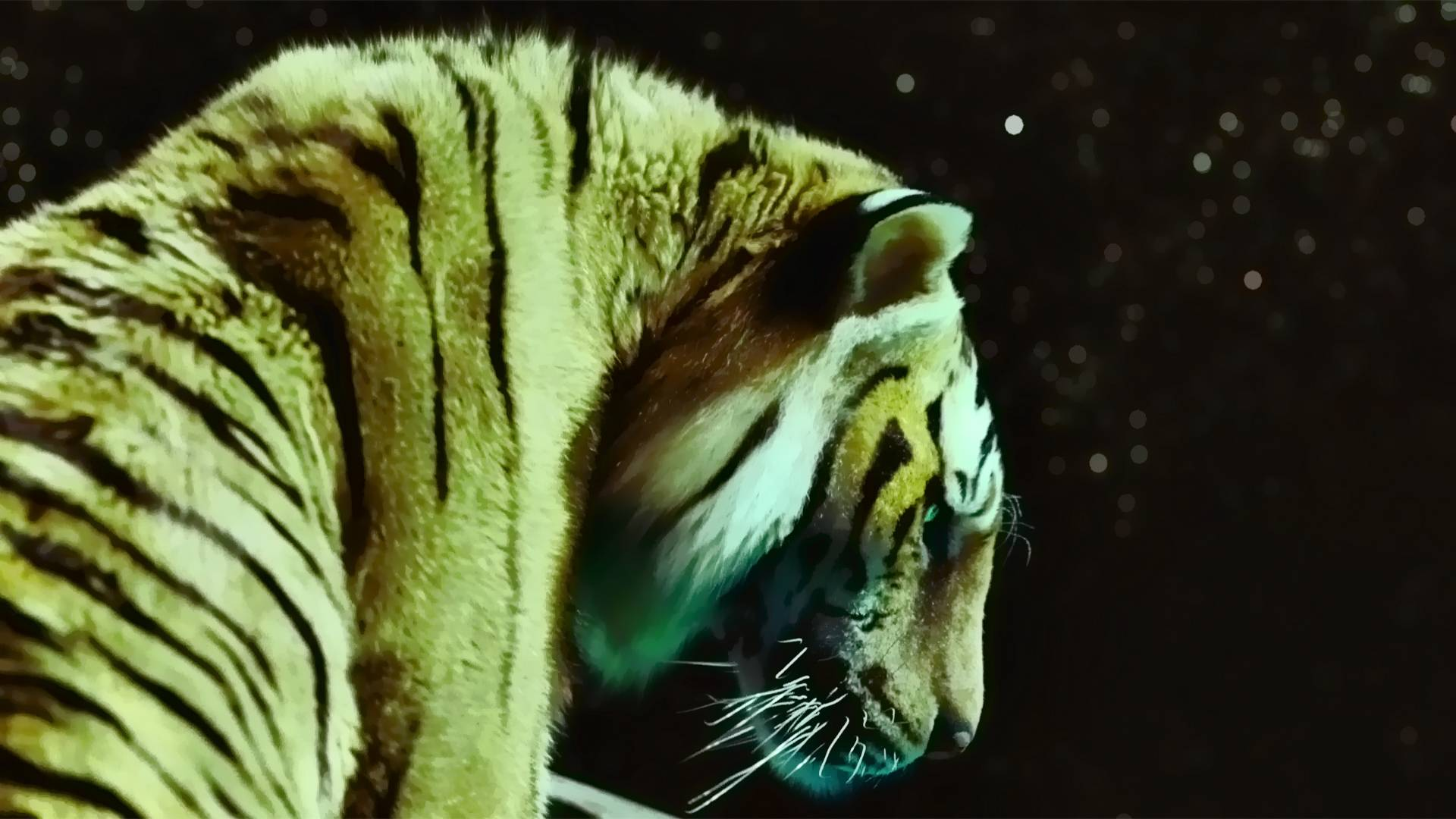 Life of pi offers a lesson in saying goodbye last for Life of pi ending
